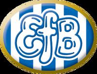 Football efb logo