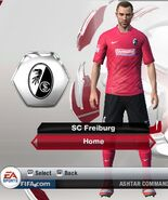 Freiburg home