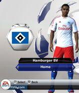 Hamburger home