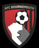 AFC Bournemouth (2013)