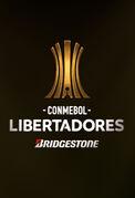 2020 코파 리베르타도레스