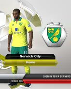 11. Norwich home kit