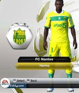 Nantes home
