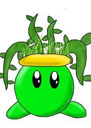 Plant fifi
