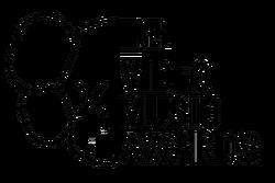 2013 MTV VMA Logo (1)