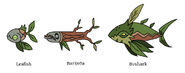 Leafish beast family