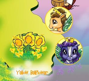 Yellow Bellflower 1