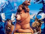 Brother Bear (franchise)