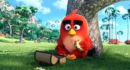 Angry-birds-1 otl170 114273 1073 mkt still LG rgb