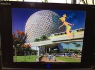 Now, here's a special message from Walt Disney World