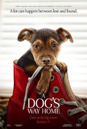 A dogs way home poster