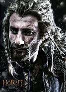 Fili poster 2 snow by aeglys-d83r3ht
