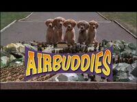 Trailer Air Buddies