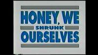 Video trailer Honey We Shrunk Ourselves