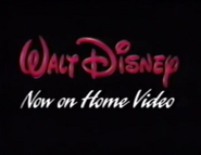 Now on Home Video (WDHV)