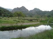 Malibu creek1