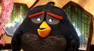 Angry-birds-6 cls550 114325 1153 mkt still LG rgb