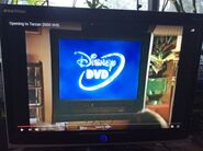 And Disney DVD