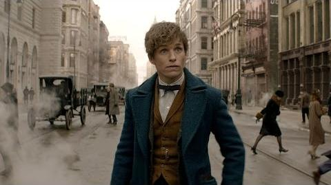 Fantastic Beasts and Where to Find Them - Teaser Trailer HD