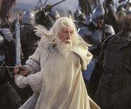 Gandalf (Ian Mckellen; TLOTR 3)