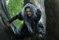 283f9a93-5e09-4bed-8c7f-a02f0f91bdbe meryl streep witch into the woods