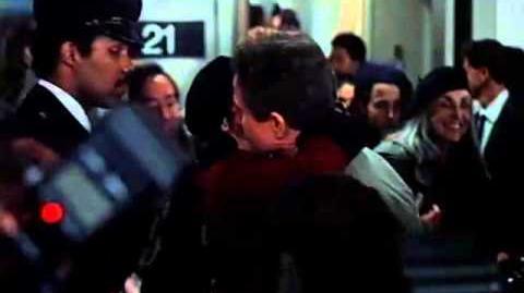 Love Affair (1994 film)