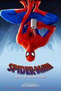 SpiderVersePeterParker