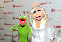 The-muppets-sequel-20120425033941679-3632289