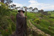 Gandalf (Ian Mckellen; TH 1)