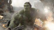 The-Hulk-The-Avengers-2012-dr-bruce-banner-31267398-2048-1152