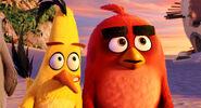 Angry-birds-4 arv570 114381 1021 mkt still LG rgb