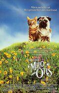Milootis