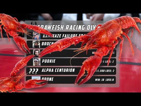 File:Crawfish Racing.jpg