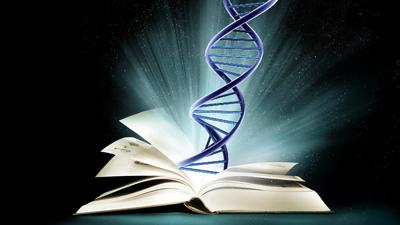 Book of Chromosomes