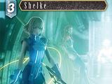 Shelke (2-035)