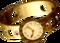 FF7 Precious watch