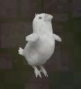 LRFFXIII White Chocobo Chick