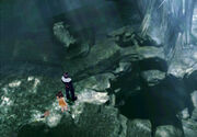 Deep sea research centre blue top