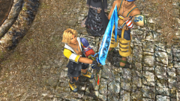 FFX HD Tidus Brotherhood