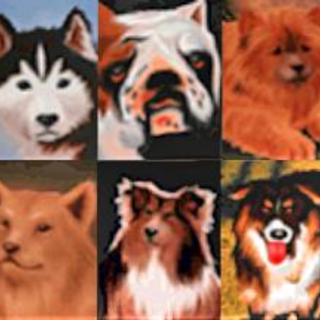 The dogs from the Pet Pals magazine in <i><a href=