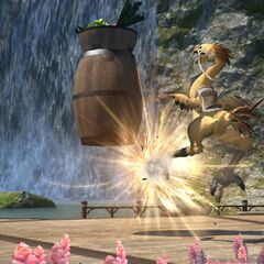 Chocobo Companion's training session.