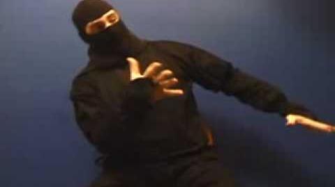 "Ask A Ninja - Question 15 ""Deciding Like A Ninja"""