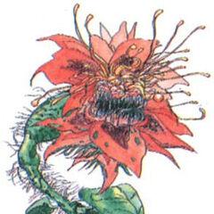 Devil's Bloom (full-colored).