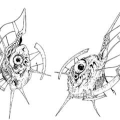 Gaudium's defense satellites