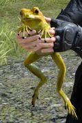 Желтая лягушка ФФ15