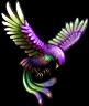 FFV Aquila tossica IOS