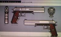 Shalua's gun
