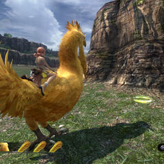 Vanille riding a wild chocobo.