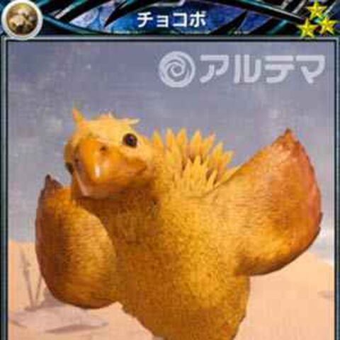 Chocobo card.