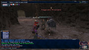 FFXI Battle